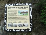 Famous cow bay