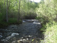 Highlight for Album: McGee Creek